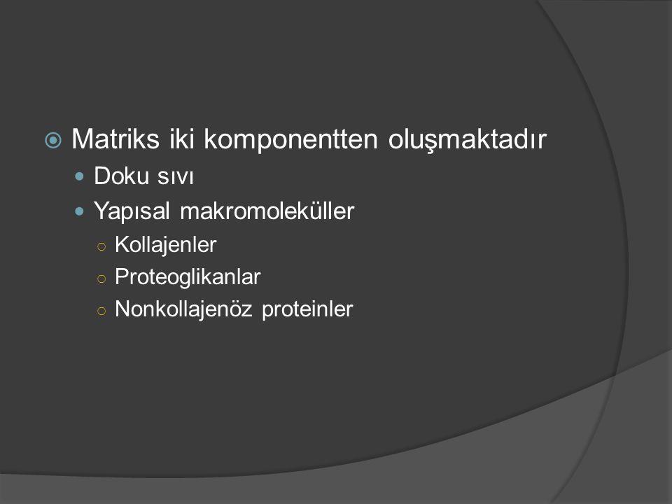  Matriks iki komponentten oluşmaktadır Doku sıvı Yapısal makromoleküller ○ Kollajenler ○ Proteoglikanlar ○ Nonkollajenöz proteinler
