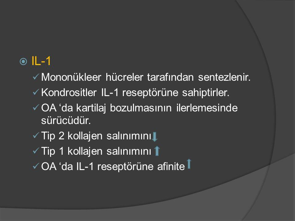  IL-1 Mononükleer hücreler tarafından sentezlenir. Kondrositler IL-1 reseptörüne sahiptirler. OA 'da kartilaj bozulmasının ilerlemesinde sürücüdür. T