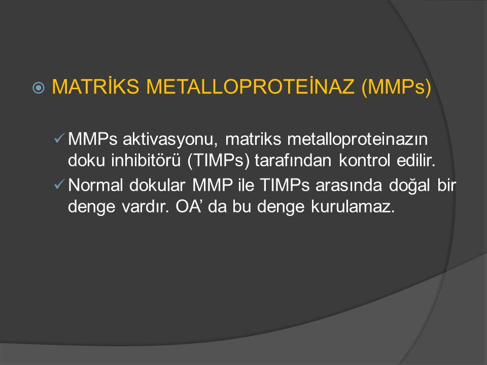  MATRİKS METALLOPROTEİNAZ (MMPs) MMPs aktivasyonu, matriks metalloproteinazın doku inhibitörü (TIMPs) tarafından kontrol edilir. Normal dokular MMP i