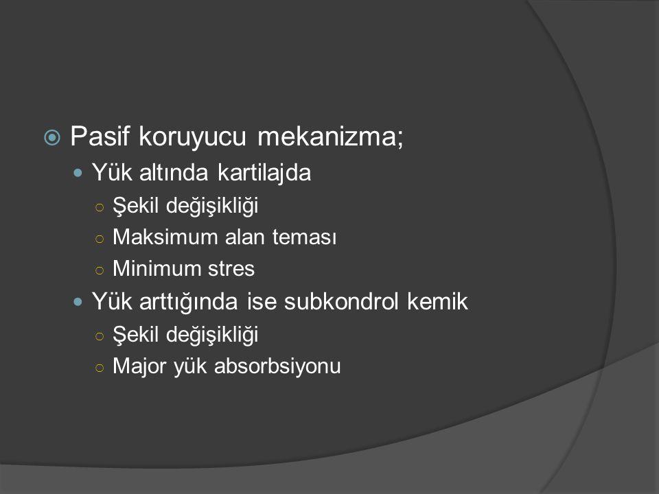  Pasif koruyucu mekanizma; Yük altında kartilajda ○ Şekil değişikliği ○ Maksimum alan teması ○ Minimum stres Yük arttığında ise subkondrol kemik ○ Şe