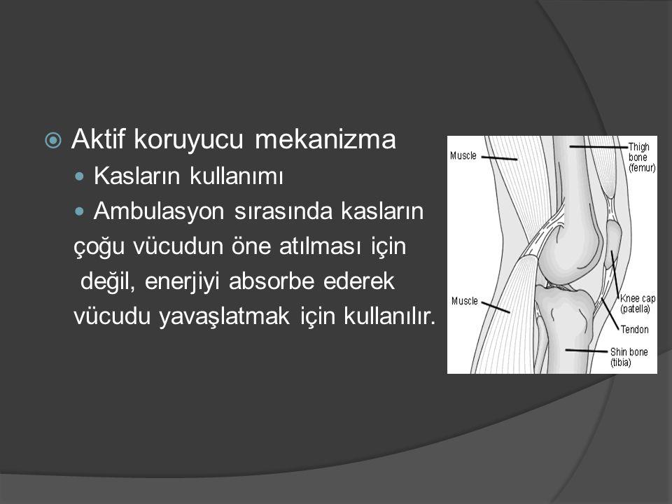  Aktif koruyucu mekanizma Kasların kullanımı Ambulasyon sırasında kasların çoğu vücudun öne atılması için değil, enerjiyi absorbe ederek vücudu yavaş