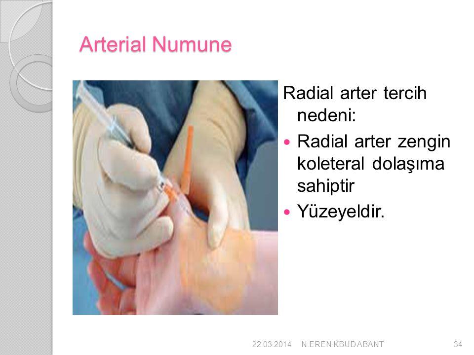 Arterial Numune Radial arter tercih nedeni: Radial arter zengin koleteral dolaşıma sahiptir Yüzeyeldir. 22.03.201434N.EREN KBUD ABANT