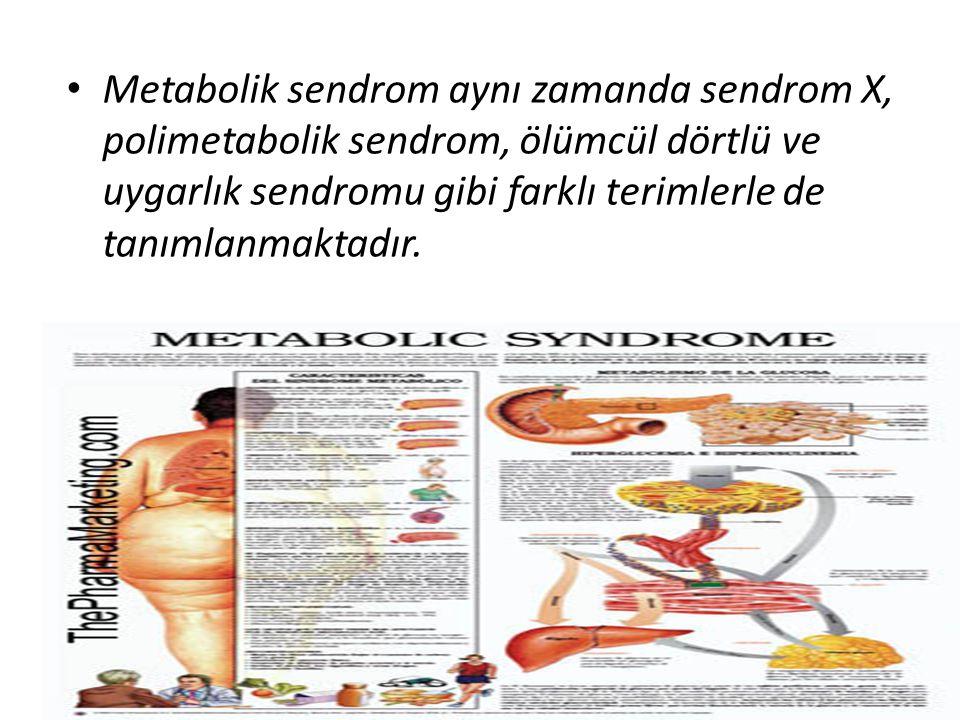 Metabolik sendrom aynı zamanda sendrom X, polimetabolik sendrom, ölümcül dörtlü ve uygarlık sendromu gibi farklı terimlerle de tanımlanmaktadır.