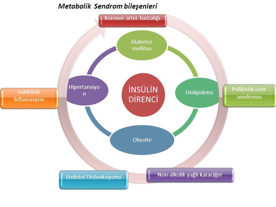 İNSÜLİN DİRENCİ Diabetes mellitus DislipidemiObezite Hipertansiyo n Koroner arter hastalığı Polikistik over sendromu Non-alkolik yağlı karaciğer Endot