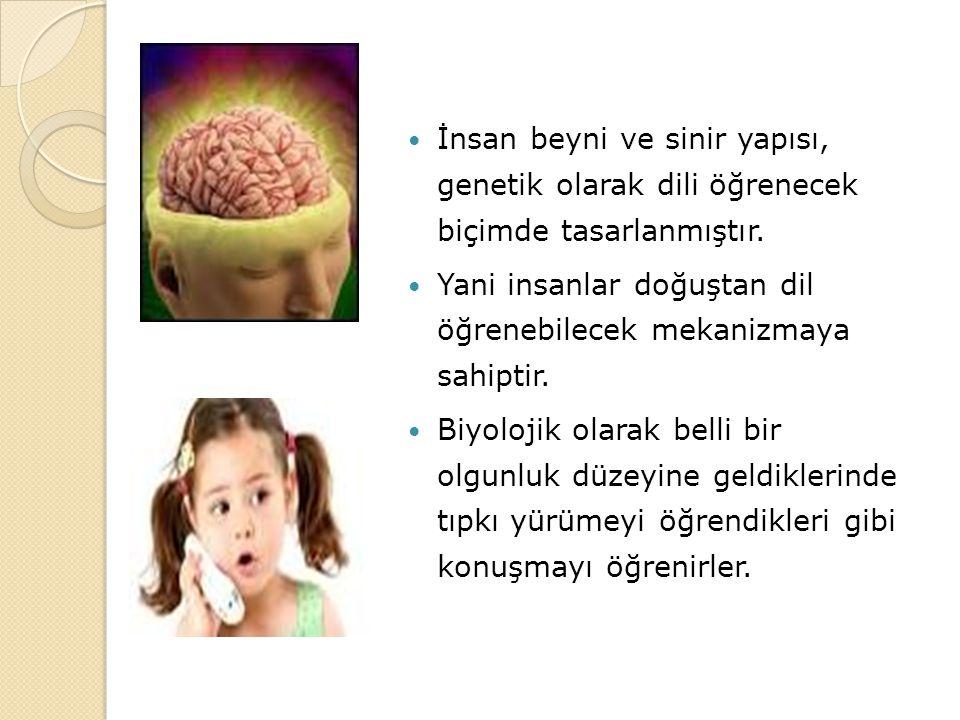 İnsan beyni ve sinir yapısı, genetik olarak dili öğrenecek biçimde tasarlanmıştır. Yani insanlar doğuştan dil öğrenebilecek mekanizmaya sahiptir. Biyo