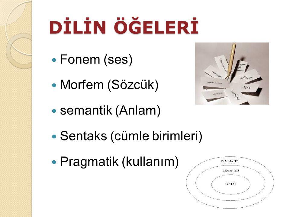 DİLİN ÖĞELERİ Fonem (ses) Morfem (Sözcük) semantik (Anlam) Sentaks (cümle birimleri) Pragmatik (kullanım)