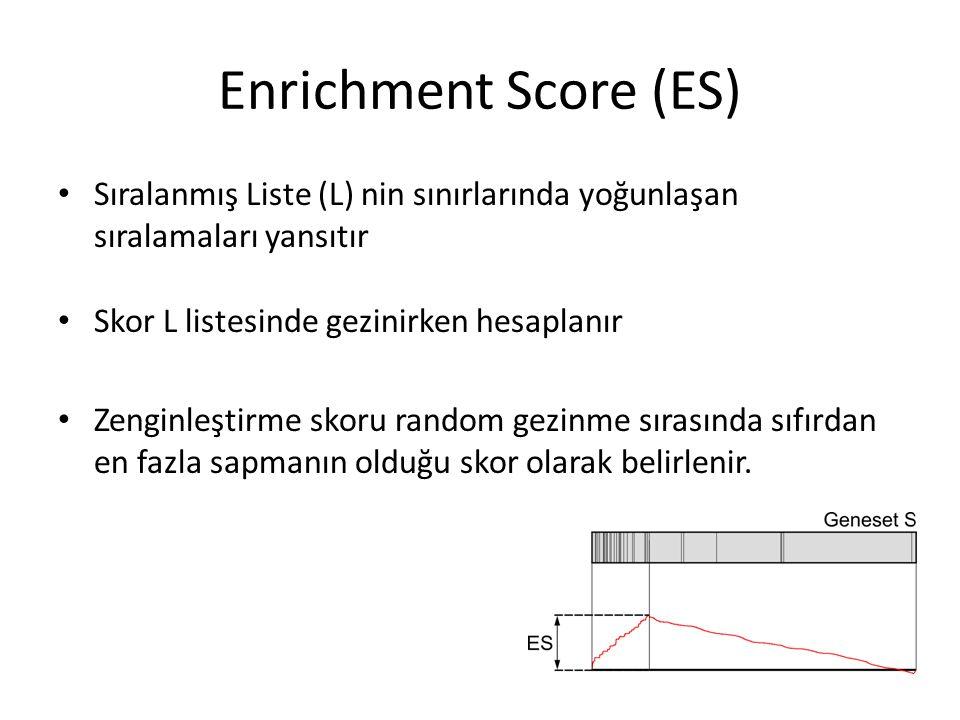 Enrichment Score (ES) Sıralanmış Liste (L) nin sınırlarında yoğunlaşan sıralamaları yansıtır Skor L listesinde gezinirken hesaplanır Zenginleştirme sk