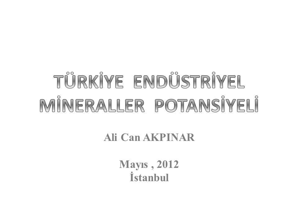 Ali Can AKPINAR Mayıs, 2012 İstanbul