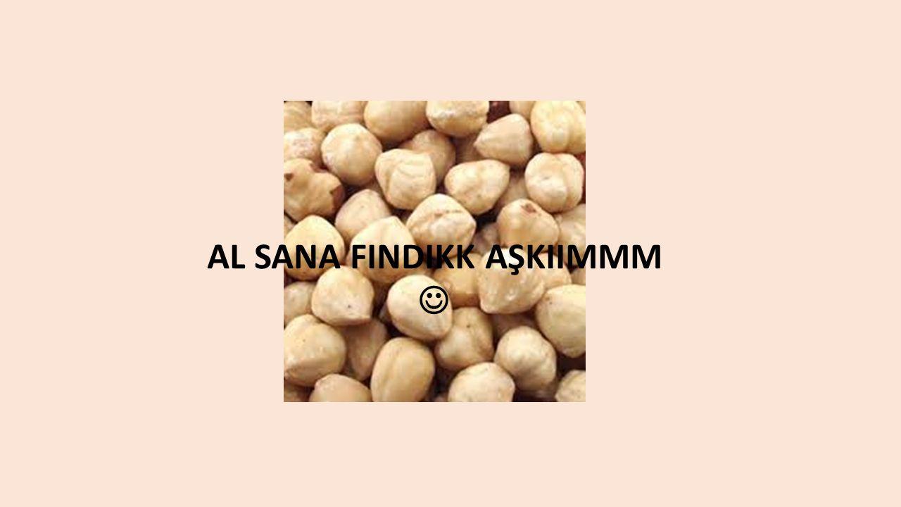 AL SANA FINDIKK AŞKIIMMM