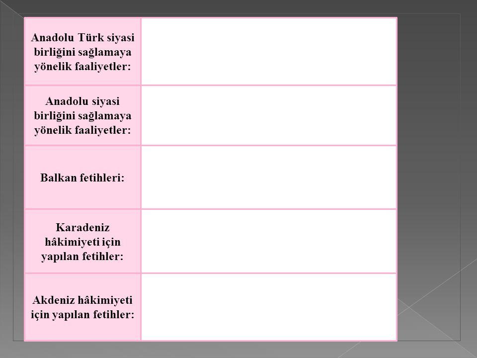 Anadolu Türk siyasi birliğini sağlamaya yönelik faaliyetler: Anadolu siyasi birliğini sağlamaya yönelik faaliyetler: Balkan fetihleri: Karadeniz hâkim