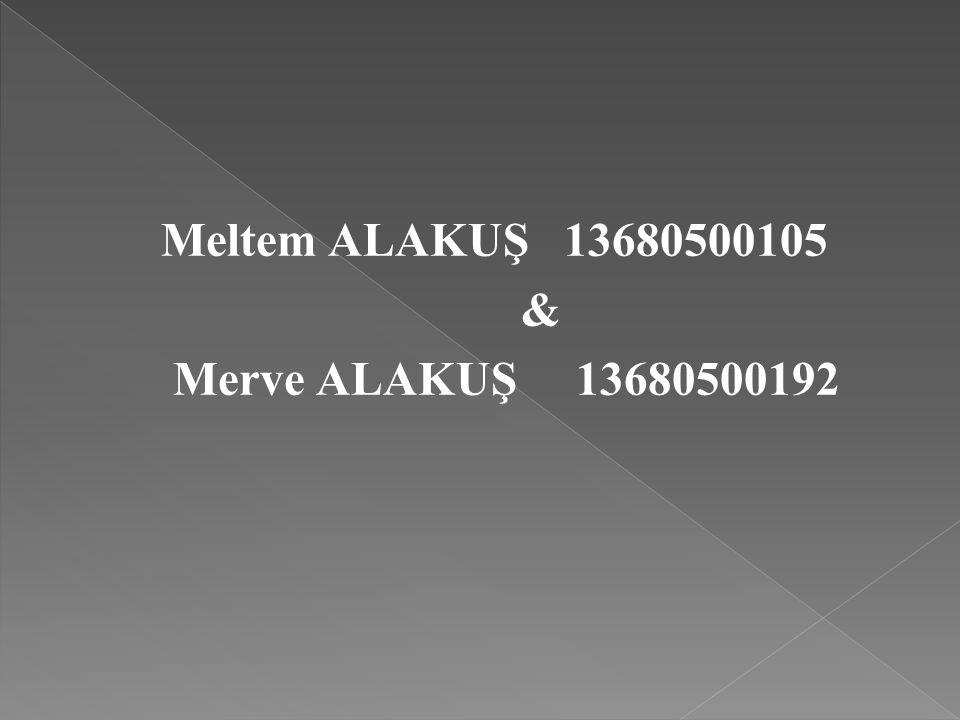 Meltem ALAKUŞ 13680500105 & Merve ALAKUŞ 13680500192