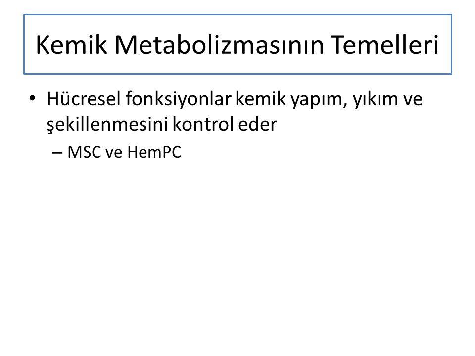 Kemik Metabolizmasının Temelleri Hücresel fonksiyonlar kemik yapım, yıkım ve şekillenmesini kontrol eder – MSC ve HemPC