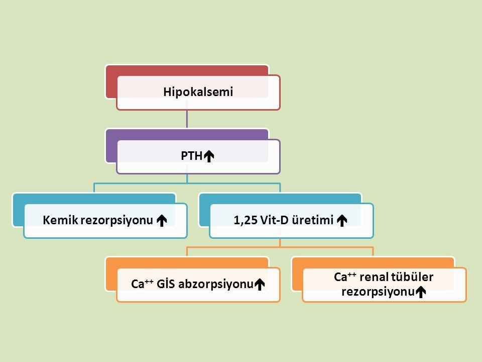 HipokalsemiPTH  Kemik rezorpsiyonu  1,25 Vit-D üretimi  Ca ++ GİS abzorpsiyonu  Ca ++ renal tübüler rezorpsiyonu 
