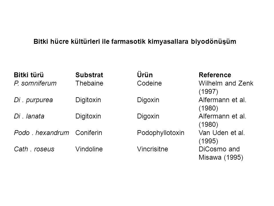 Bitki türüSubstratÜrünReference P. somniferumThebaineCodeineWilhelm and Zenk (1997) Di.