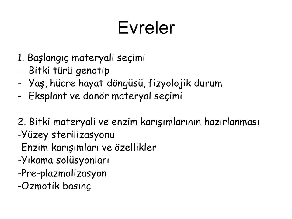 Evreler 1.