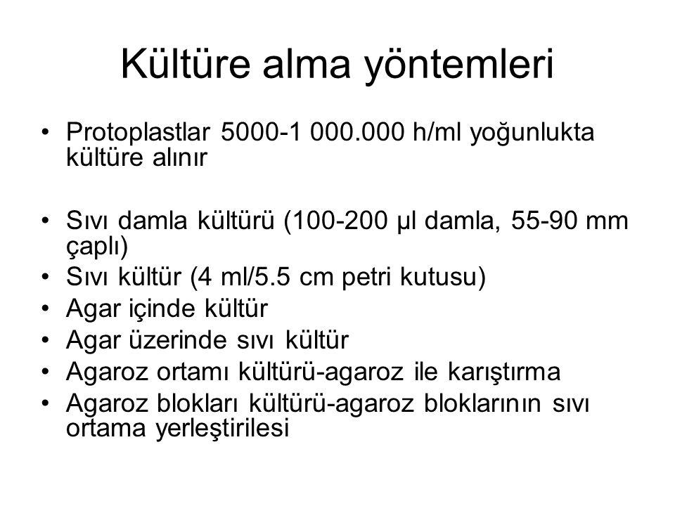 Kültüre alma yöntemleri Protoplastlar 5000-1 000.000 h/ml yoğunlukta kültüre alınır Sıvı damla kültürü (100-200 µl damla, 55-90 mm çaplı) Sıvı kültür (4 ml/5.5 cm petri kutusu) Agar içinde kültür Agar üzerinde sıvı kültür Agaroz ortamı kültürü-agaroz ile karıştırma Agaroz blokları kültürü-agaroz bloklarının sıvı ortama yerleştirilesi