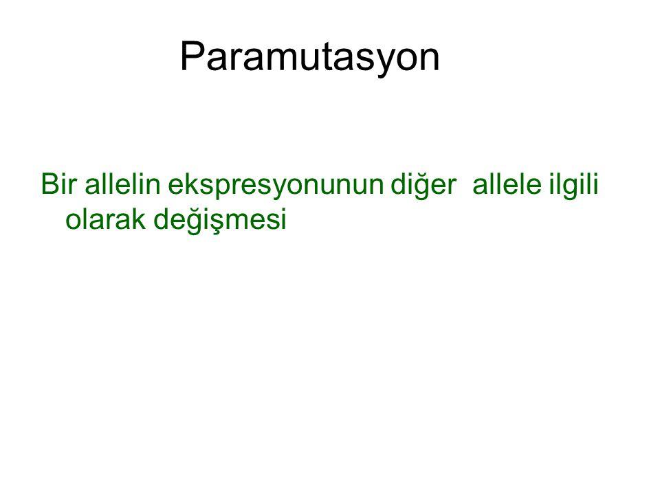 Paramutasyon Bir allelin ekspresyonunun diğer allele ilgili olarak değişmesi