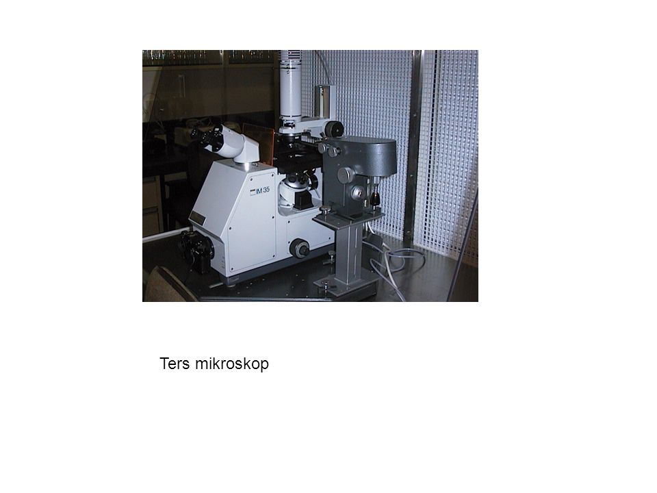 Ters mikroskop