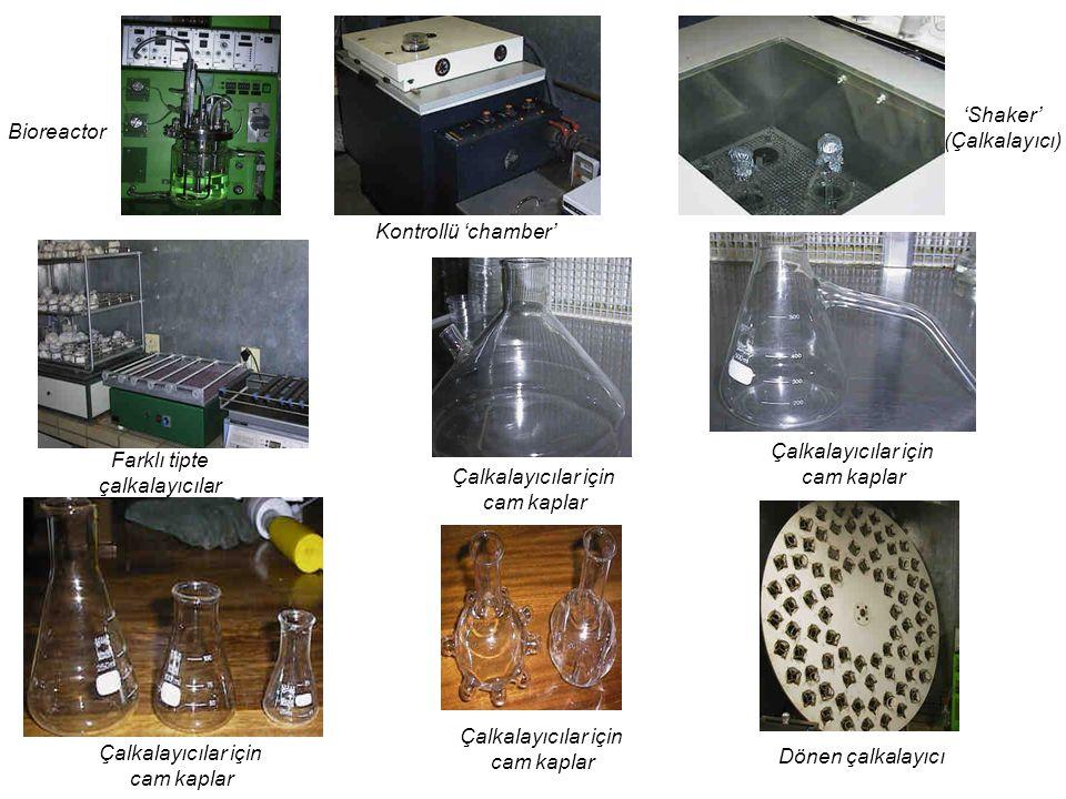 Dönen çalkalayıcı Çalkalayıcılar için cam kaplar Farklı tipte çalkalayıcılar Çalkalayıcılar için cam kaplar Çalkalayıcılar için cam kaplar Çalkalayıcılar için cam kaplar 'Shaker' (Çalkalayıcı) Kontrollü 'chamber' Bioreactor