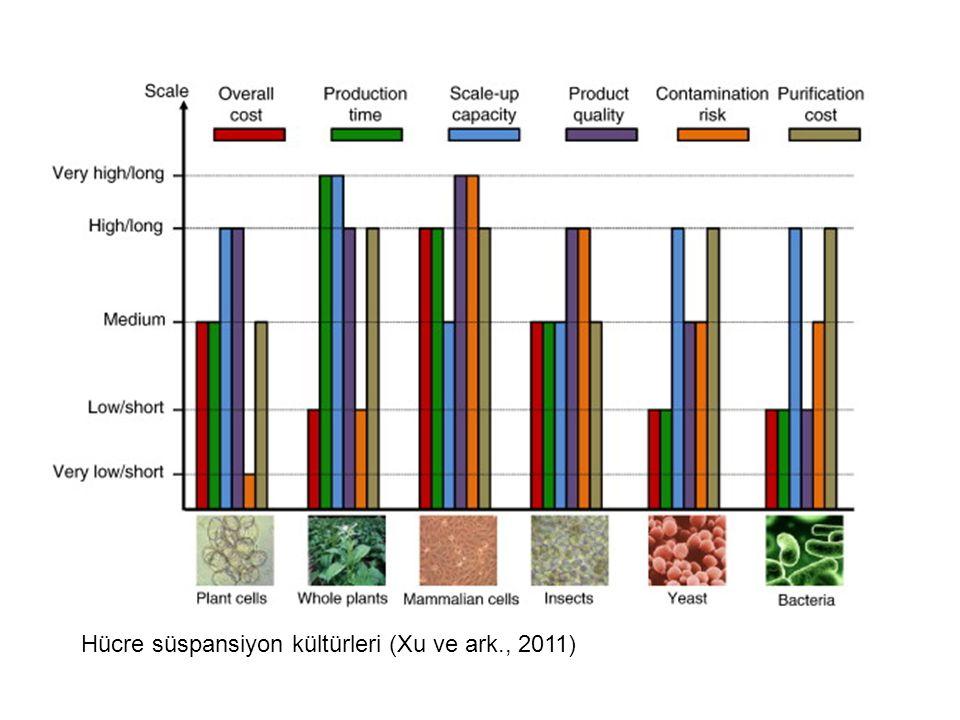 Hücre süspansiyon kültürleri (Xu ve ark., 2011)