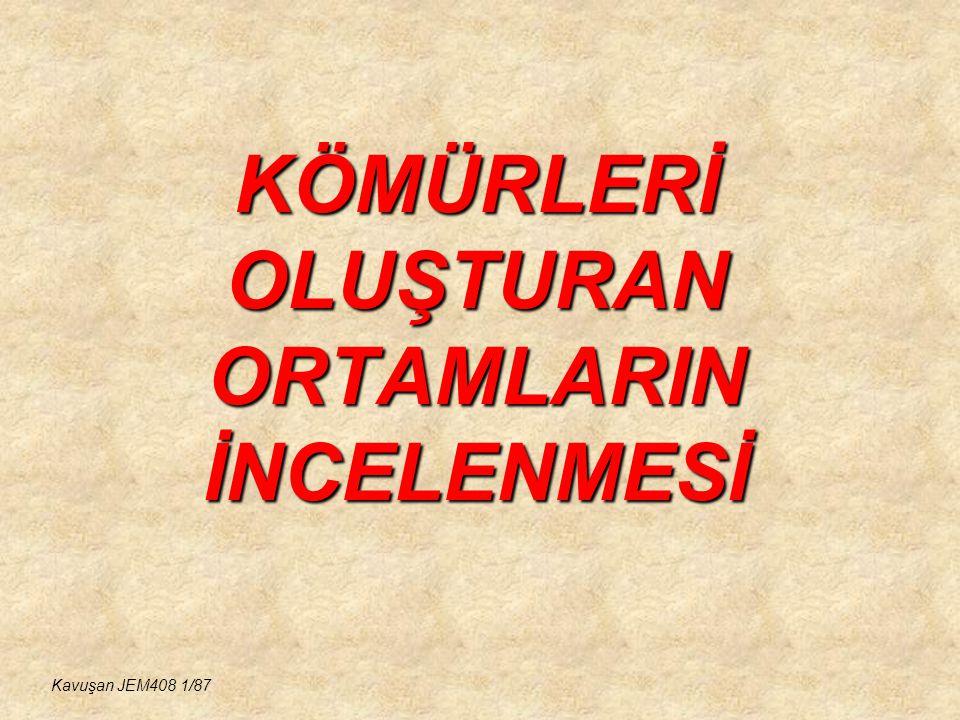 KÖMÜRLERİ OLUŞTURAN ORTAMLARIN İNCELENMESİ Kavuşan JEM408 1/87