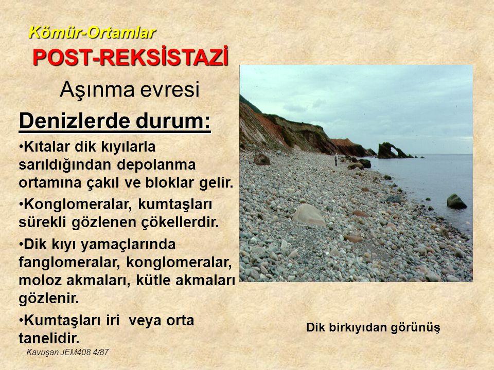 Kömür-Ortamlar KÖMÜR İÇEREN HAVZALARININ ÖZELLİKLERİ Kavuşan JEM408 25/87