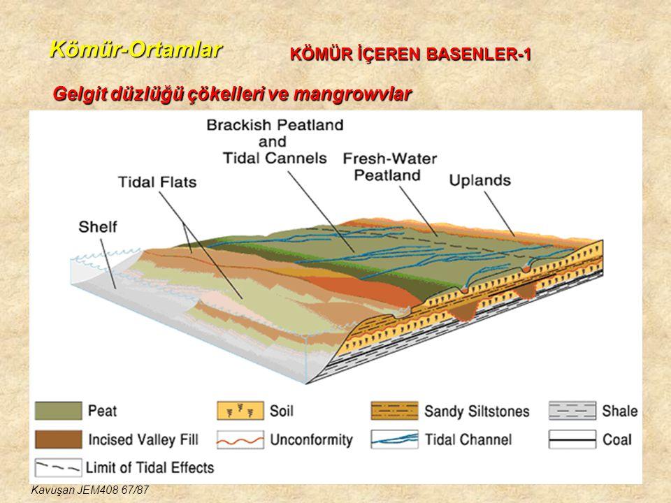 Kömür-Ortamlar KÖMÜR İÇEREN BASENLER-1 Gelgit düzlüğü çökelleri ve mangrowvlar Kavuşan JEM408 67/87