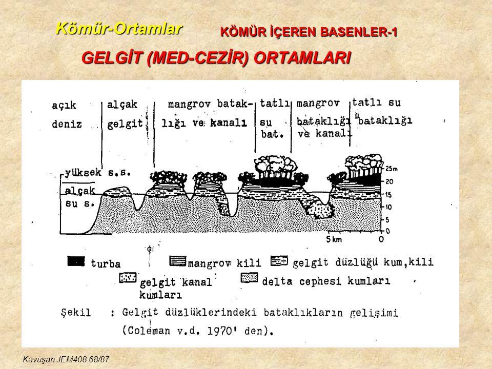 Kömür-Ortamlar GELGİT (MED-CEZİR) ORTAMLARI KÖMÜR İÇEREN BASENLER-1 Kavuşan JEM408 68/87