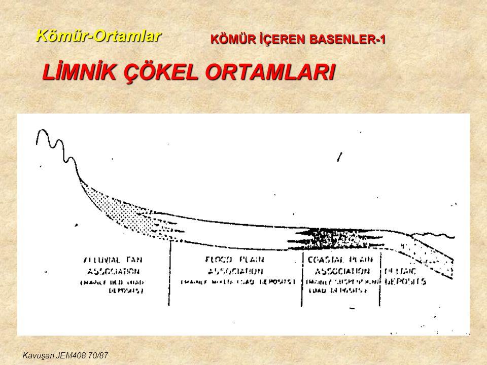 Kömür-Ortamlar LİMNİK ÇÖKEL ORTAMLARI KÖMÜR İÇEREN BASENLER-1 Kavuşan JEM408 70/87
