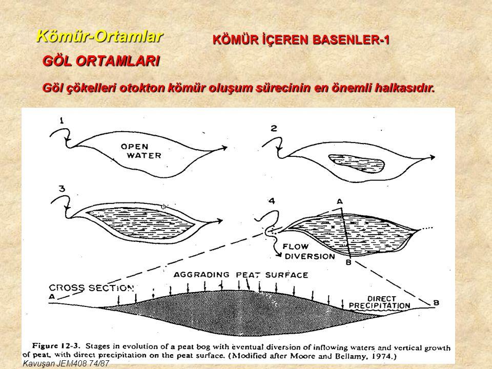 Kömür-Ortamlar GÖL ORTAMLARI KÖMÜR İÇEREN BASENLER-1 Göl çökelleri otokton kömür oluşum sürecinin en önemli halkasıdır. Kavuşan JEM408 74/87