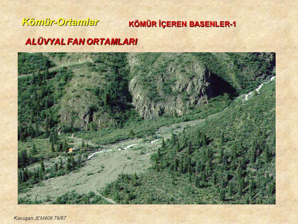 Kömür-Ortamlar ALÜVYAL FAN ORTAMLARI KÖMÜR İÇEREN BASENLER-1 Kavuşan JEM408 79/87