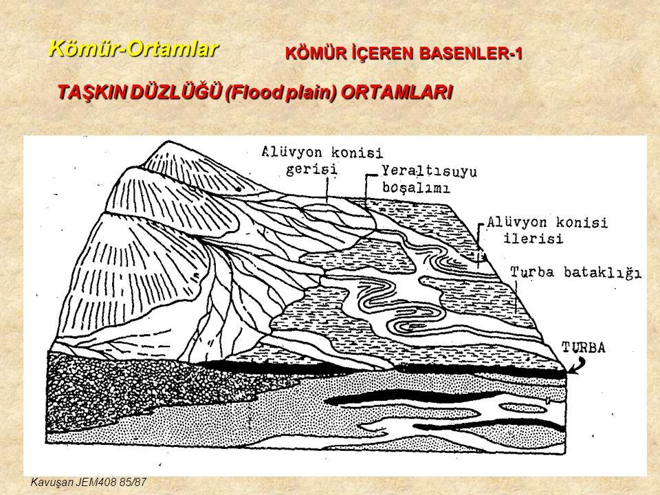 Kömür-Ortamlar TAŞKIN DÜZLÜĞÜ (Flood plain) ORTAMLARI KÖMÜR İÇEREN BASENLER-1 Kavuşan JEM408 85/87