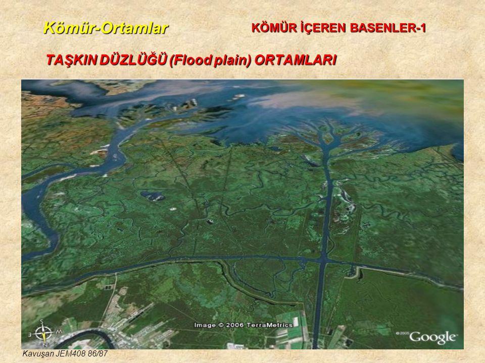 Kömür-Ortamlar TAŞKIN DÜZLÜĞÜ (Flood plain) ORTAMLARI KÖMÜR İÇEREN BASENLER-1 Kavuşan JEM408 86/87