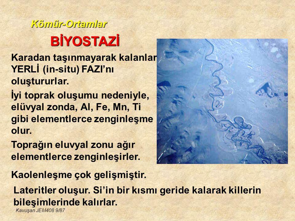 Kömür-Ortamlar BARİYER GERİSİ ORTAMLAR KÖMÜR İÇEREN BASENLER-1 Kavuşan JEM408 40/87