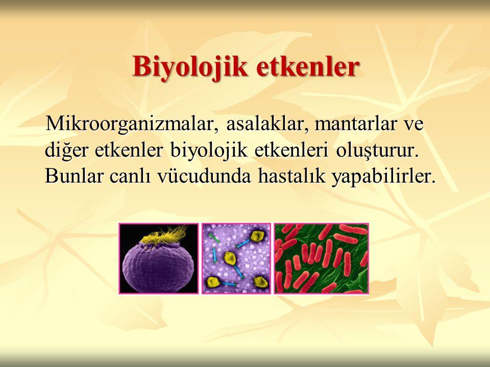 Biyolojik etkenler Mikroorganizmalar, asalaklar, mantarlar ve diğer etkenler biyolojik etkenleri oluşturur.