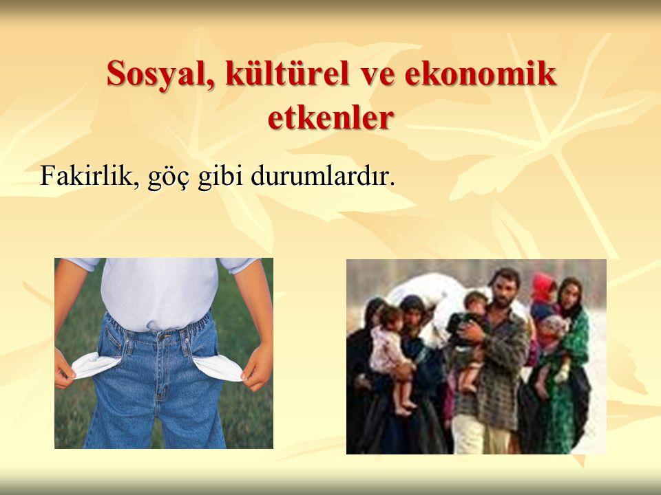 Sosyal, kültürel ve ekonomik etkenler Fakirlik, göç gibi durumlardır.