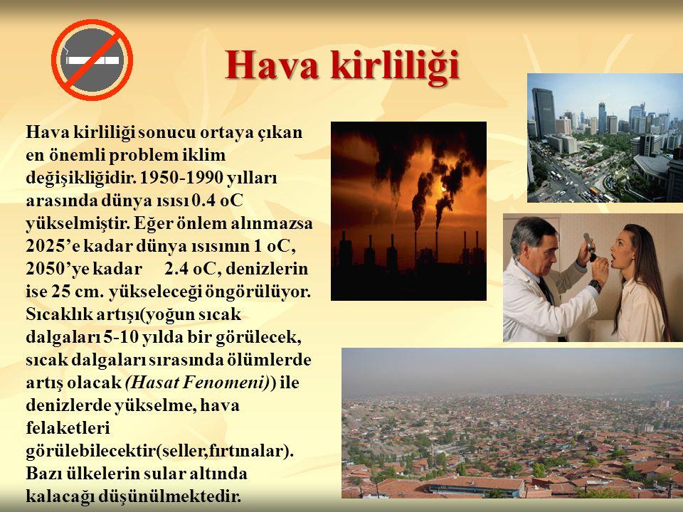 Hava kirliliği Hava kirliliği sonucu ortaya çıkan en önemli problem iklim değişikliğidir.