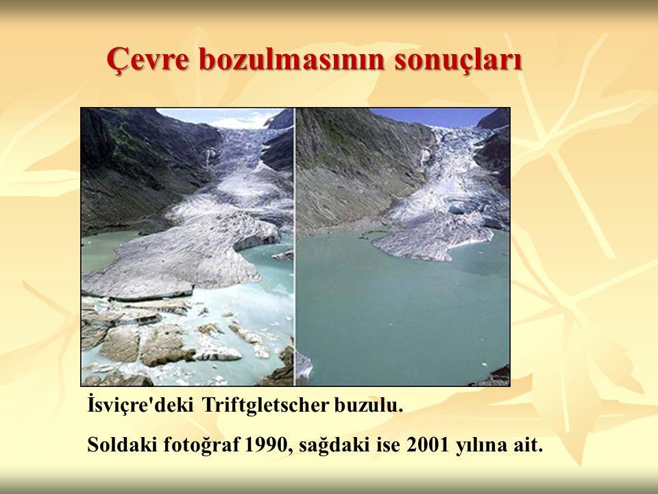 İsviçre deki Triftgletscher buzulu. Soldaki fotoğraf 1990, sağdaki ise 2001 yılına ait.