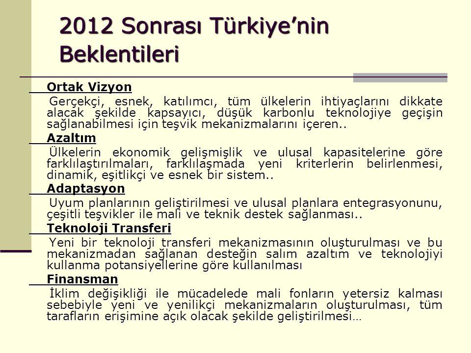 2012 Sonrası Türkiye'nin Beklentileri Ortak Vizyon Gerçekçi, esnek, katılımcı, tüm ülkelerin ihtiyaçlarını dikkate alacak şekilde kapsayıcı, düşük kar