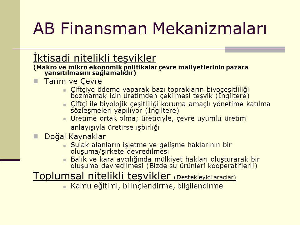 AB Finansman Mekanizmaları İktisadi nitelikli teşvikler (Makro ve mikro ekonomik politikalar çevre maliyetlerinin pazara yansıtılmasını sağlamalıdır)
