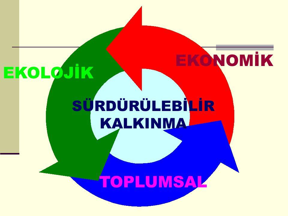 Bu doğrultuda, Türkiye'nin: 1.