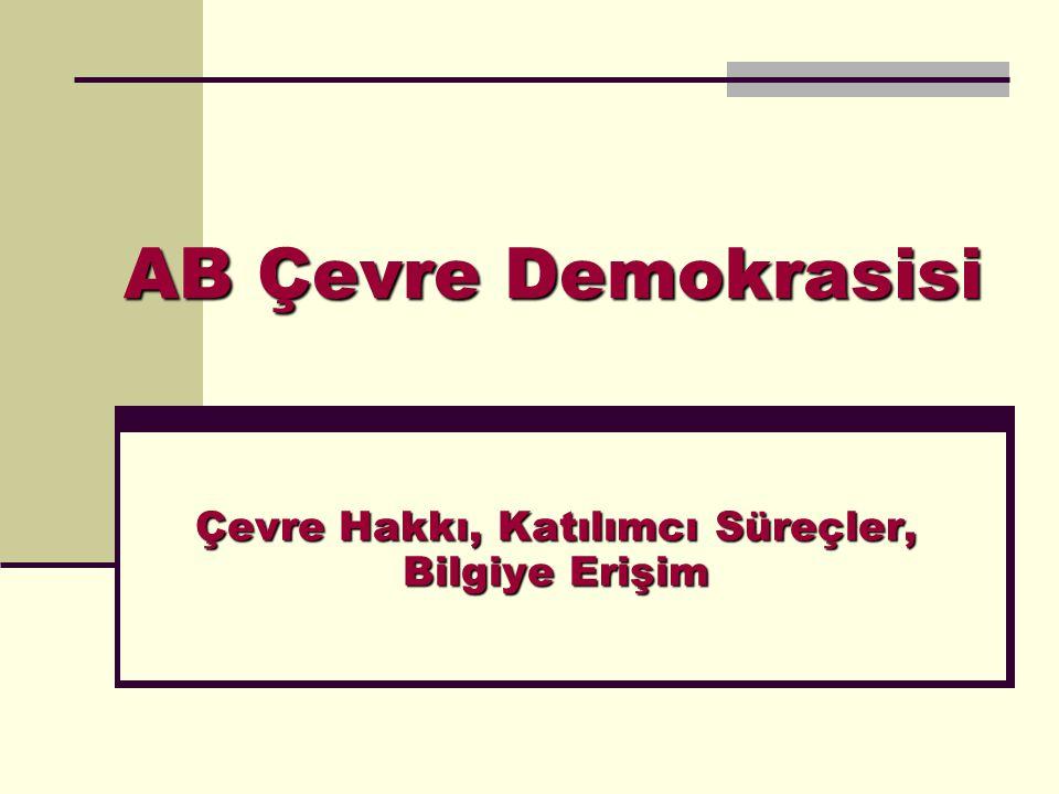 AB Çevre Demokrasisi Çevre Hakkı, Katılımcı Süreçler, Bilgiye Erişim