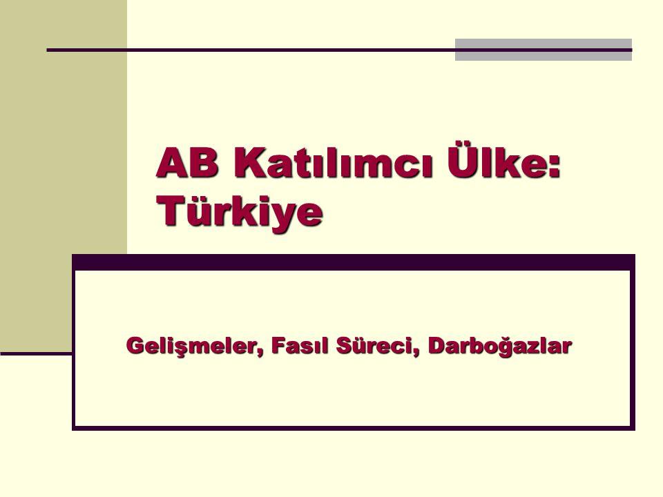 AB Katılımcı Ülke: Türkiye Gelişmeler, Fasıl Süreci, Darboğazlar