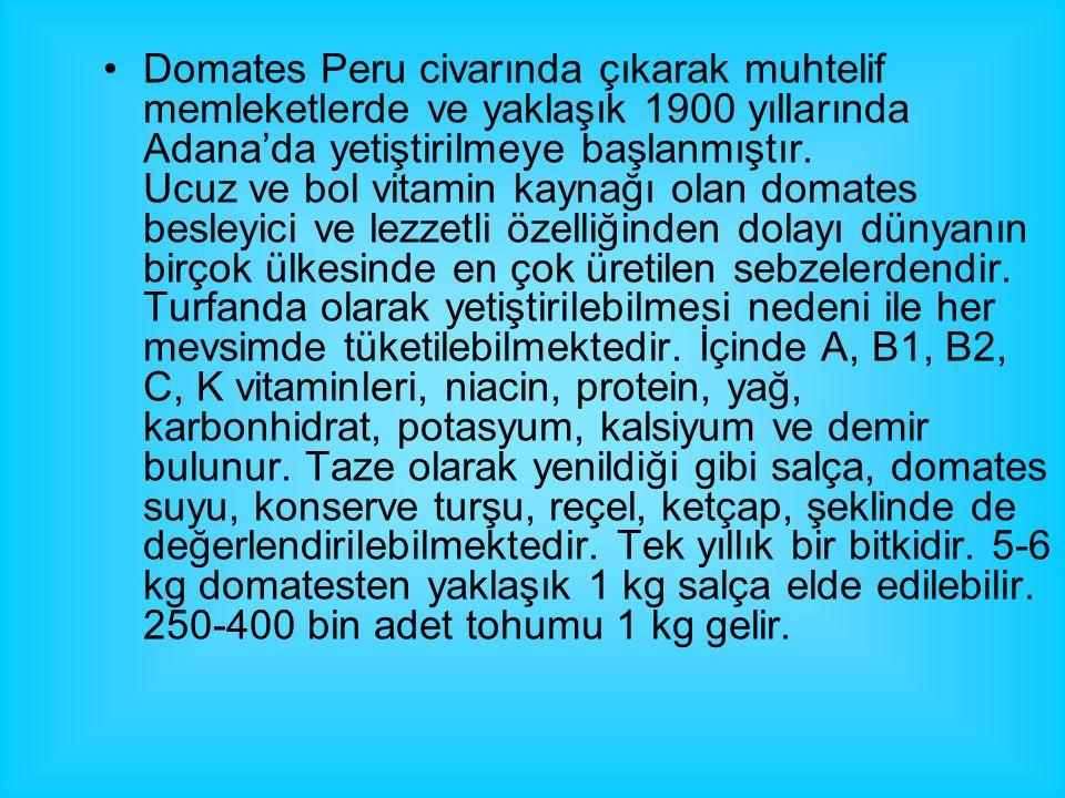Domates Peru civarında çıkarak muhtelif memleketlerde ve yaklaşık 1900 yıllarında Adana'da yetiştirilmeye başlanmıştır. Ucuz ve bol vitamin kaynağı ol