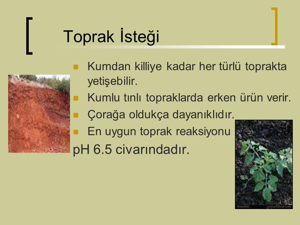 Toprak İsteği Kumdan killiye kadar her türlü toprakta yetişebilir. Kumlu tınlı topraklarda erken ürün verir. Çorağa oldukça dayanıklıdır. En uygun top