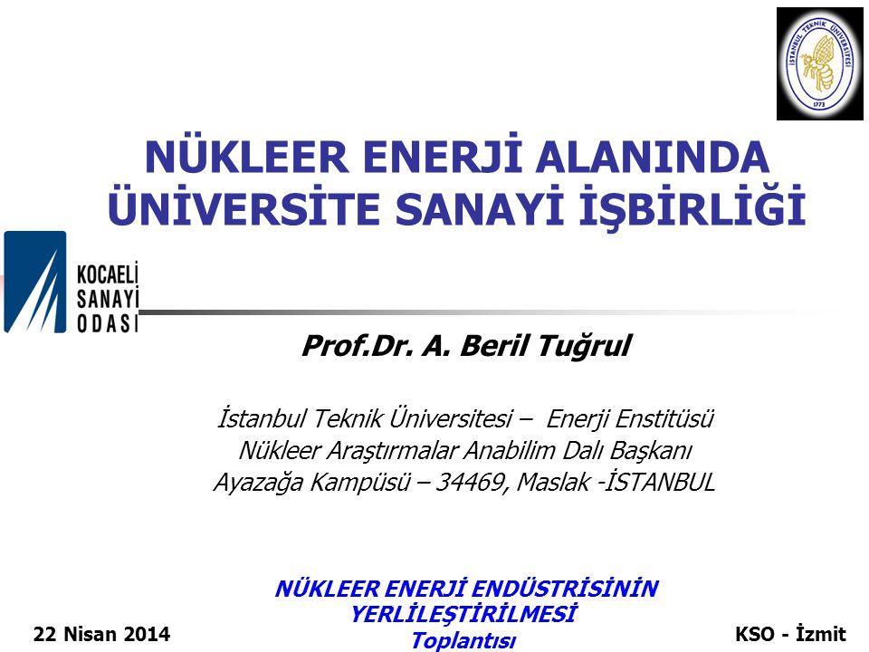 NÜKLEER ENERJİ ALANINDA ÜNİVERSİTE SANAYİ İŞBİRLİĞİ Prof.Dr. A. Beril Tuğrul İstanbul Teknik Üniversitesi – Enerji Enstitüsü Nükleer Araştırmalar Anab