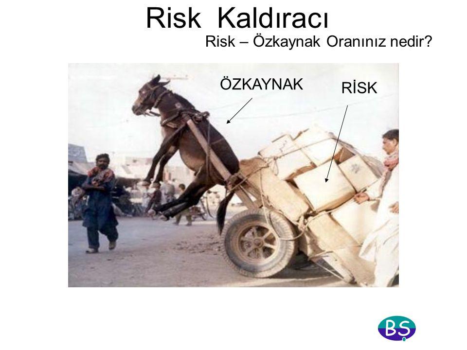 Risk Kaldıracı Risk – Özkaynak Oranınız nedir ÖZKAYNAK RİSK