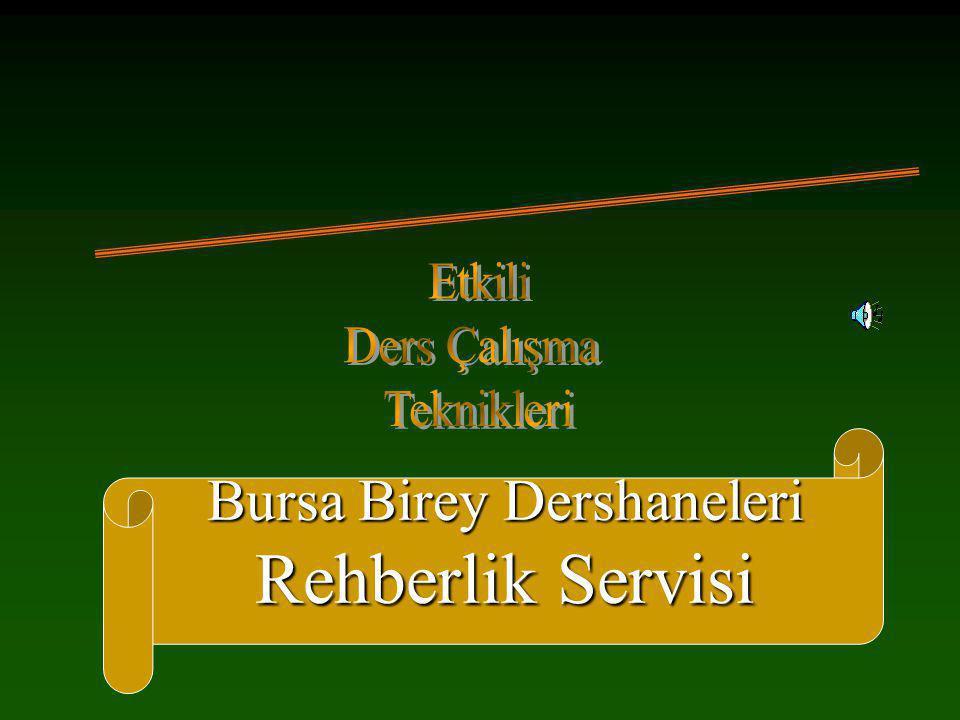 Bursa Birey Dershaneleri Rehberlik Servisi