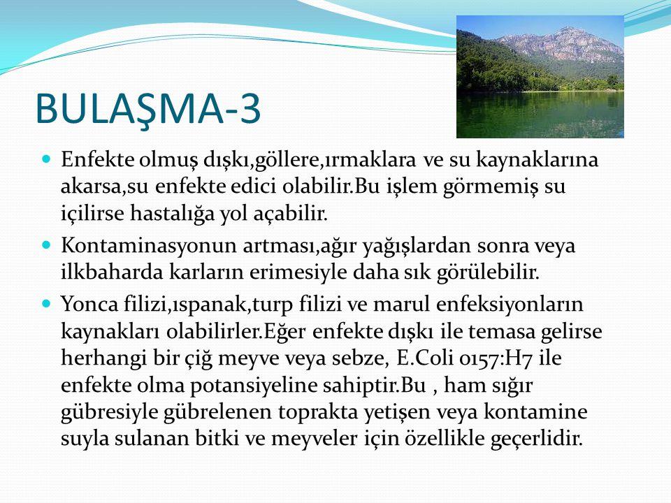 BULAŞMA-3 Enfekte olmuş dışkı,göllere,ırmaklara ve su kaynaklarına akarsa,su enfekte edici olabilir.Bu işlem görmemiş su içilirse hastalığa yol açabil