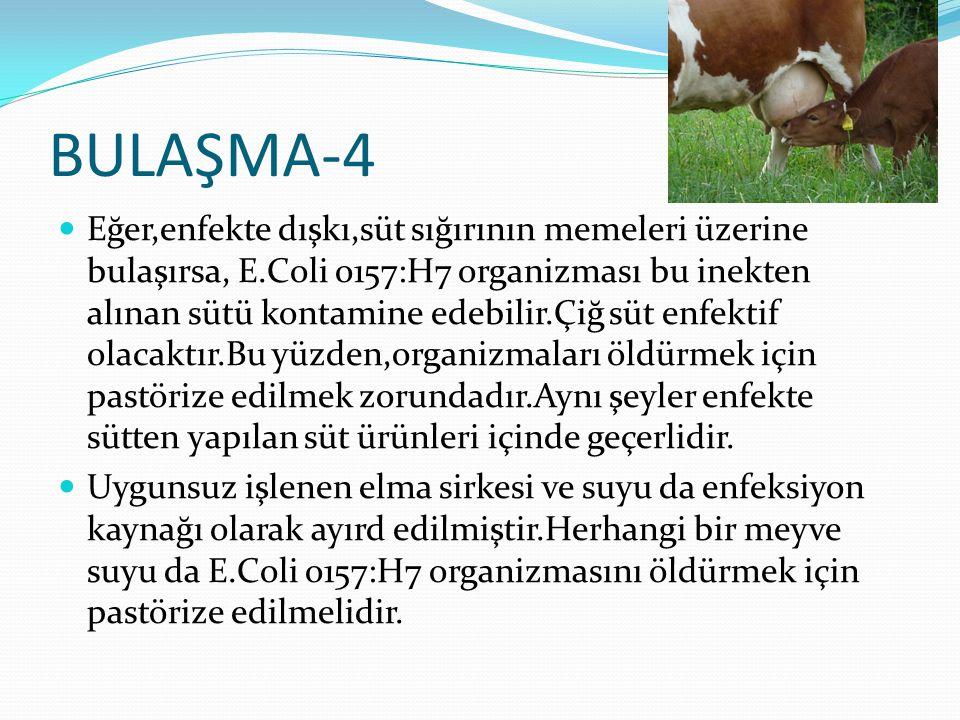BULAŞMA-4 Eğer,enfekte dışkı,süt sığırının memeleri üzerine bulaşırsa, E.Coli o157:H7 organizması bu inekten alınan sütü kontamine edebilir.Çiğ süt enfektif olacaktır.Bu yüzden,organizmaları öldürmek için pastörize edilmek zorundadır.Aynı şeyler enfekte sütten yapılan süt ürünleri içinde geçerlidir.